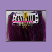 clips_hair